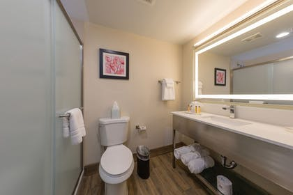 Bathroom | Best Western Premier Milwaukee-Brookfield Hotel & Suites