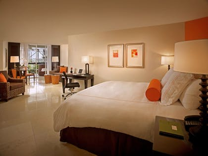 Room | The Mayfair at Coconut Grove