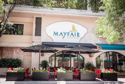 Dining | The Mayfair at Coconut Grove