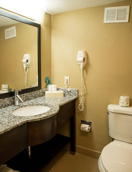 Bathroom | Best Western Palm Beach Lakes