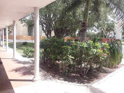 Guestroom View | Best Western Palm Beach Lakes