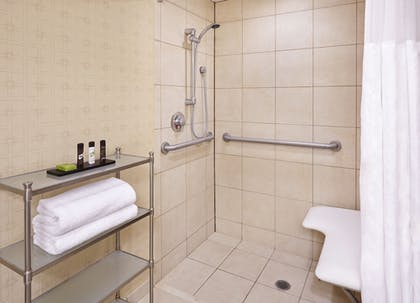 Bathroom | Embassy Suites by Hilton Parsippany