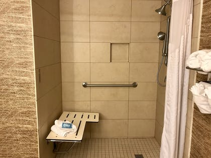 Bathroom Shower | Holiday Inn Express Hotel and Suites Pasadena-Colorado Blvd