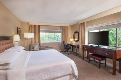 Guestroom | Sheraton Framingham Hotel & Conference Center