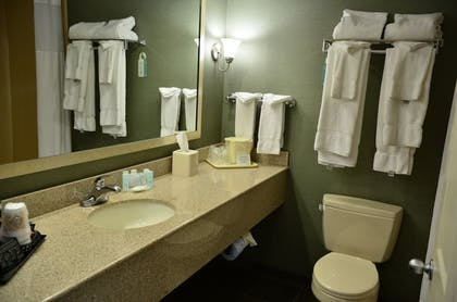 Bathroom | Clarion Inn & Suites at the Outlets of Lake George