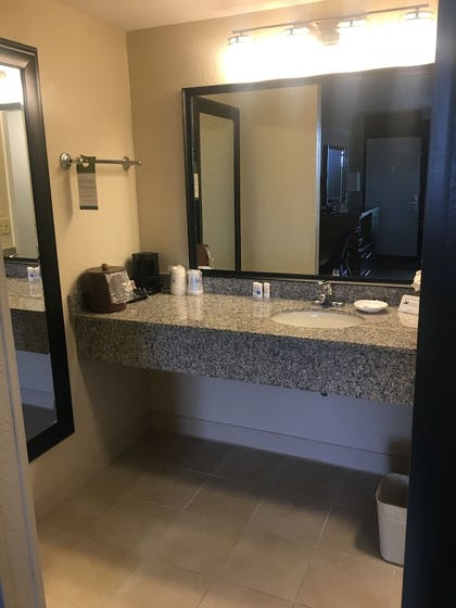 Bathroom Sink | Best Western Plus Siesta Key Gateway