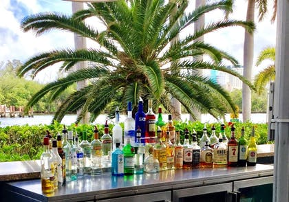 Poolside Bar | GALLERYone - a DoubleTree Suites by Hilton Hotel