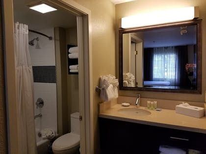 Bathroom | Staybridge Suites Lake Buena Vista