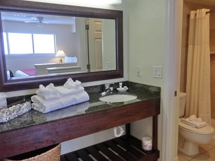 Bathroom | Chase Suite Hotel Tampa