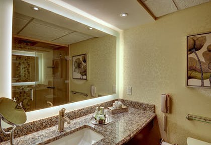Bathroom | Eden Resort and Suites, BW Premier Collection
