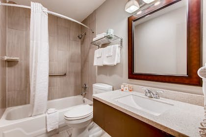 Bathroom | Orangewood Inn & Suites Midtown