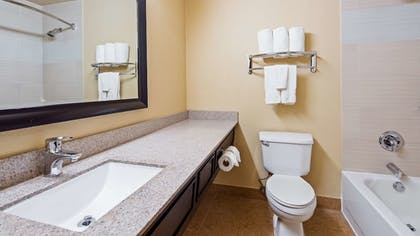 Bathroom | Best Western Plus Addison/Dallas Hotel