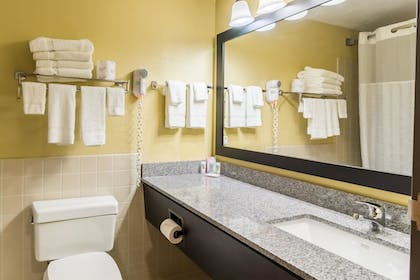 Bathroom | Quality Inn & Suites Mayo Clinic Area