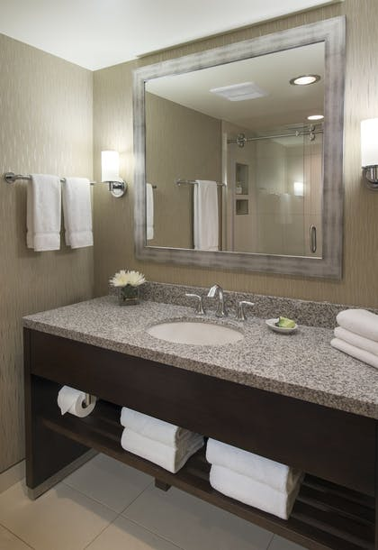 Bathroom | The Madison Concourse Hotel and Governor's Club