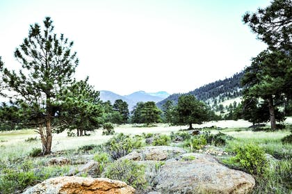 Property Grounds   The Historic Crags Lodge by Diamond Resorts