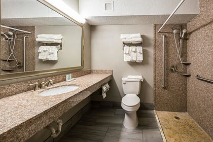 Bathroom | Clarion Inn & Suites Near Downtown