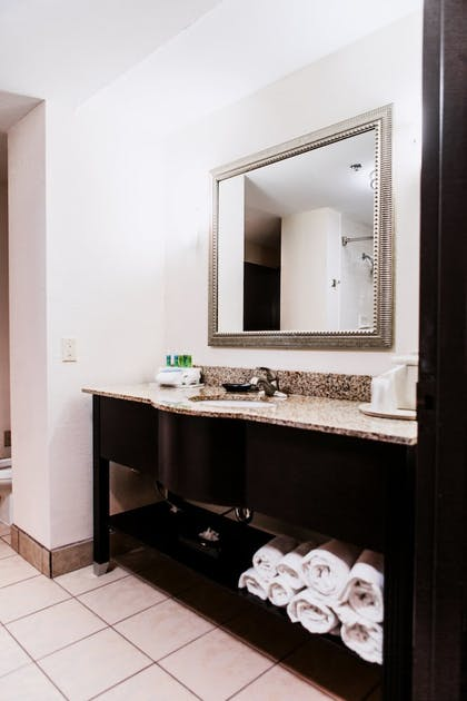 Bathroom | Holiday Inn Express Harlingen