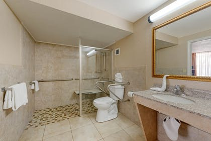 Bathroom | Quality Inn & Suites Conference Center