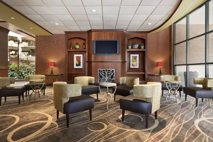 Fireplace | Embassy Suites by Hilton Lincoln