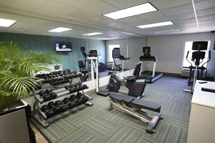 Fitness Facility | Holiday Inn Express Hotel & Suites Blythewood