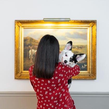 Pet-Friendly | The Driskill - in the Unbound Collection by Hyatt