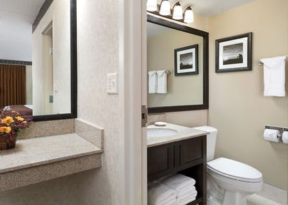 Bathroom | Best Western Ramkota Hotel