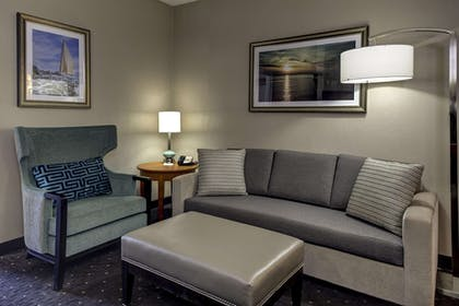 Living Area | Embassy Suites by Hilton Williamsburg