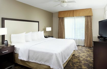   1 King Bed 1 Bedroom Suite   Homewood Suites by Hilton Charlotte Airport