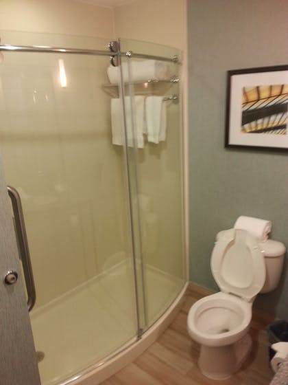 Bathroom   Holiday Inn Express & Suites Houston North-Spring Area