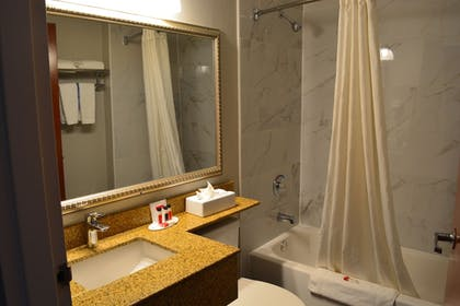 Bathroom | Microtel Inn & Suites by Wyndham BWI Airport Baltimore