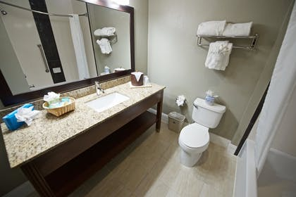 | Suite, 1 King Bed, Non Smoking, Refrigerator & Microwave | Best Western Airport Inn & Suites