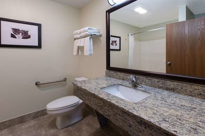 Bathroom | AmericInn by Wyndham Petoskey