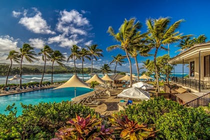 Pool | Turtle Bay Resort