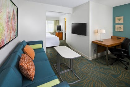 Guestroom | SpringHill Suites Orlando Lake Buena Vista Marriott Village