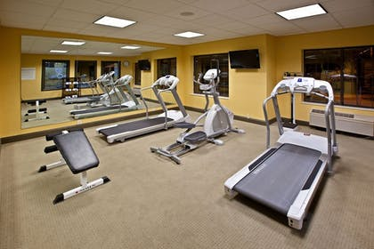 Fitness Facility | Holiday Inn Express Hotel & Suites Indianapolis East