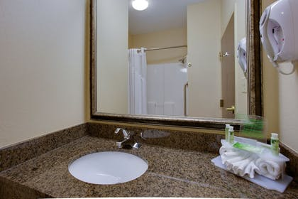 In-Room Amenity | Holiday Inn Express Hotel & Stes Columbia I-20 at Clemson Rd