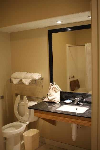 Bathroom | Best Western Plus Des Moines West Inn & Suites