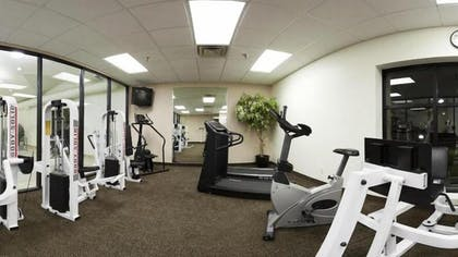 Gym | Holiday Inn Express Hotel & Suites WADSWORTH
