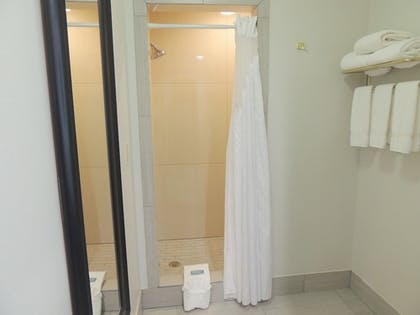 Bathroom | Holiday Inn Express & Suites Birmingham Trussville
