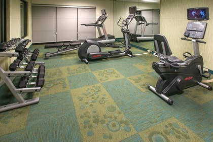 Sports Facility | Springhill Suites by Marriott Orlando North/Sanford