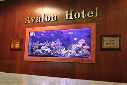 Reception | Avalon Hotel & Conference Center