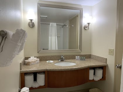 Bathroom | Best Western Orlando Gateway Hotel