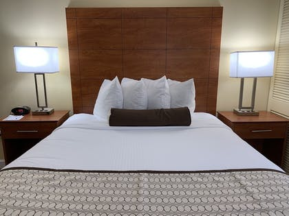 Room | Best Western Orlando Gateway Hotel
