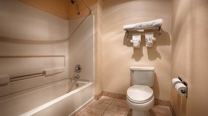 Bathroom | Best Western El Centro Inn