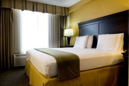 Guestroom | Holiday Inn Express Hotel & Suites DFW Airport South