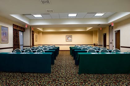 Meeting Facility | Holiday Inn Express Hotel & Suites DFW Airport South