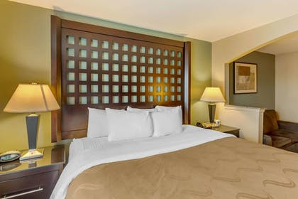Room   Quality Suites Sherman