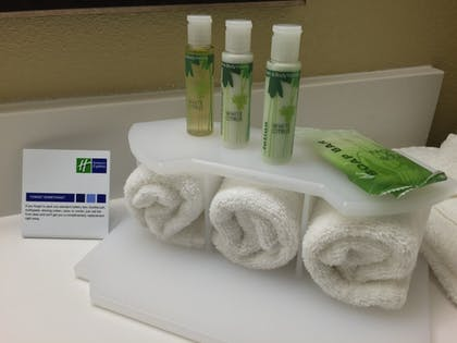 In-Room Amenity | Holiday Inn Express Chicago NW - Arlington Heights