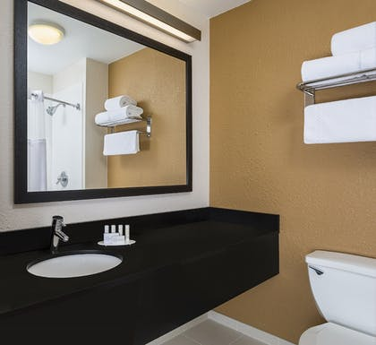 Bathroom | Fairfield Inn and Suites by Marriott Valparaiso