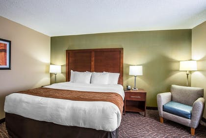 Guestroom | Comfort Inn & Suites Kannapolis - Concord